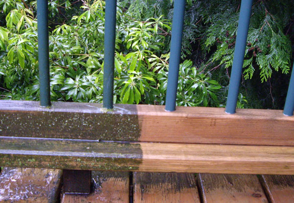 Removing mold, mildew, slime and algae from deck, with power washing, before and after