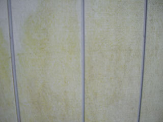 wood siding with green slime